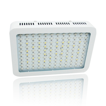 Jual Hot 1200W Spektrum Penuh Hidroponik LED Grow Light