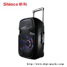 Alto-falante portátil profissional com alto-falante sem fio Bluetooth FM