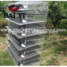 BAIYI Hot Selling Quail Cages For Sale
