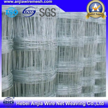 Zinc Coated Farm Fence/Knotted Security Wire Mesh Fence