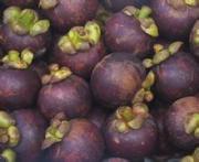 Grape Peel Extract Pigment Organic Pigment