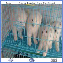 La jaula del animal doméstico de perro perro