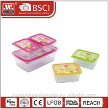 No molde da impressão retângulo recipiente de alimento conjunto 5pcs