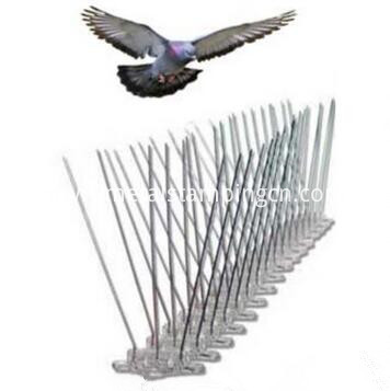 pest bird metal spike
