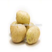 2014 Китай Высокое Качество Дешевой Цене Свежего Картофеля Покупателей Из Word