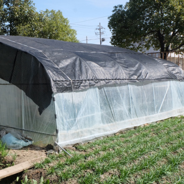 Agricultural film Tunnel Plastic greenhouse for lettuces