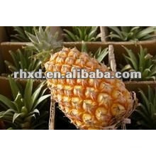 fresh pineapple with sweet taste