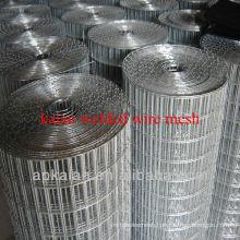 hebei anping kaian 1x1 welded wire mesh