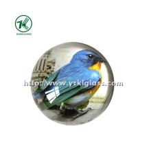 Peso de papel de cristal com papel de decalque por SGS (KL140308-1F)