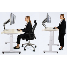 Electric Ergonomic Office Height Adjustable Desk/Lift Desk/Standing Desk (ET201)