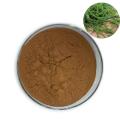 High Quality Pure Natural 10%-60% Polysaccharides Sargassum Fusiforme Extract Powder
