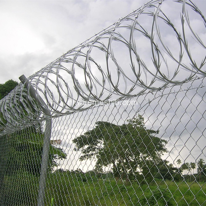 Razor Wire Fence-Concertina Coil Type