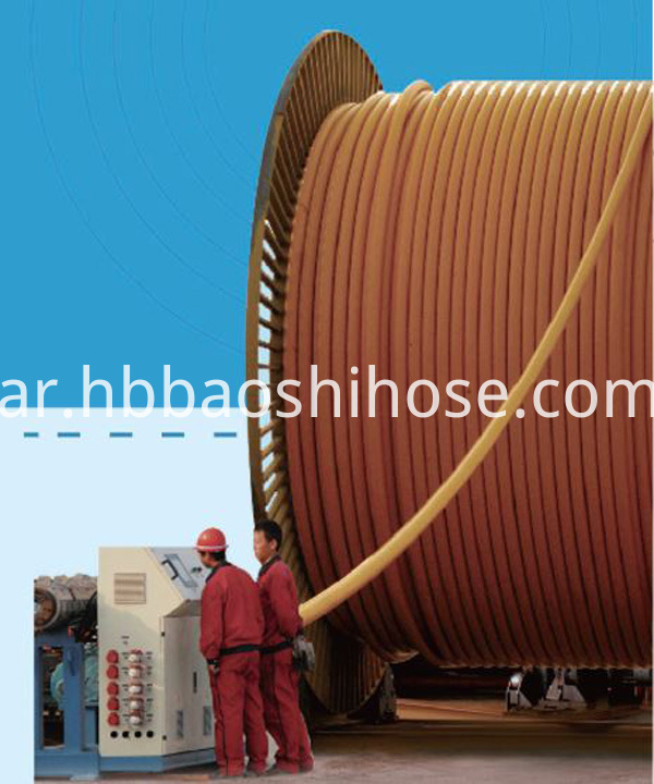 Flexible Gas Hose