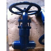High Pressure Temperature Gate Valve