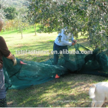 tree olive spain, agricultural greenhouses used for collect olive, olive net wrap