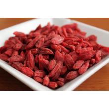 Ningxia dried goji berry export