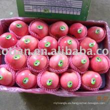 Manzanas Fuji Rojas