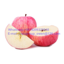 Yantai Origin New Crop FUJI Apple Top Quality