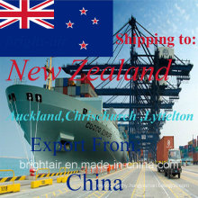 International Cheap Sea/Air/Courier Express Shipping Forwarder Services From China to New Zealand