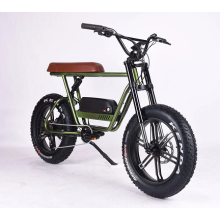 Nice Cool 48V 11.6Ah Lithium Battery Swappable Fat Tire  Electric Bike