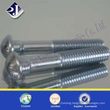 Grade8.8 Track Bolt (zinc plated) Fish Screw