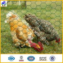 Chicken Wire / Hex Netting (HPZS-1008)