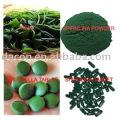 Chlorella tablet 250mg or 500mg Organic