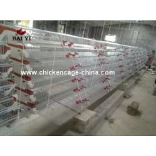 Automatic Quail Cage And Quail Farm Equipment For Sale Philippines