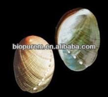 Natural Concha Haliotidis extract (Abalone extract powder)
