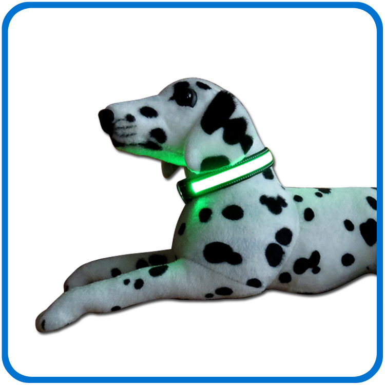 Led blinkande i Dark Glow Dog Collar