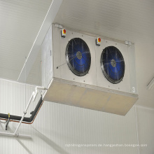 Tiefkühlschrank-Weg der hohen Qualität im Fleisch-Kühlraum