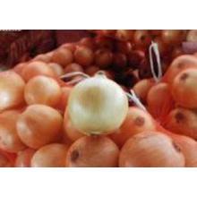 Nova cebola fresca de qualidade superior para venda
