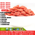 350 taille goji berry Approvisionnement direct d'usine traditionnelle
