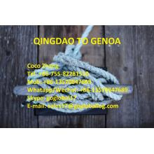 Shandong Qingdao Sea Freight to Italy Genoa
