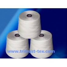 (2 / 30s) hilo de coser hecho girar del hilado de polyester