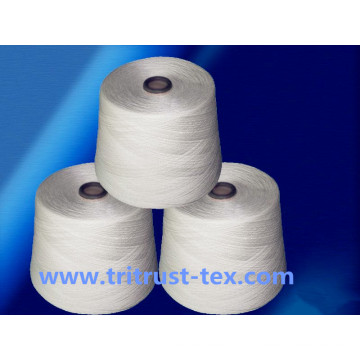 (2/30s) Spun Polyester Yarn Sewing Yarn