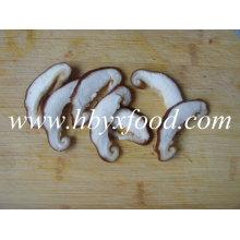 Chinês, secado, cogumelo, cogumelo, shiitake, fatia