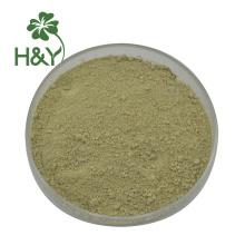 precio al por mayor venta de polvo de extracto de baicalina 85%