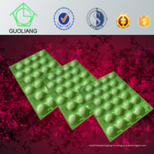 China Uso profesional del fabricante de SGS FDA Uso del aguacate Bandejas plásticas para el embalaje de la fruta hecho del polipropileno de la categoría alimenticia