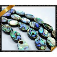 Perlas ovales planas de Shell del olmo, joyería de Shell (APS020)