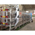 Automatic Rearing Layer Cage for Poultry Equipment