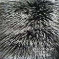 Long Pile Faux Raccoon Fur Esdt18jc0035