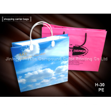 Custom Shopping Bag with Hard Handle ISO9001: 2008