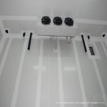 Tieftemperatur-Hühnchen-Kühlraum-Gefrierschrank für Verkauf