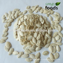 Buy New Crop shineskin pumpkin Seeds