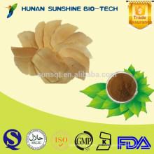 SunShine Tongkat Ali Extract / Tongkat Ali Herbs Aumenta el deseo sexual y Anti-cáncer