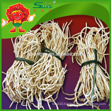High Quality Herba Houttuyniae root with competitive price
