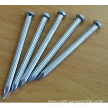 Galvanized Concrete Nails Price