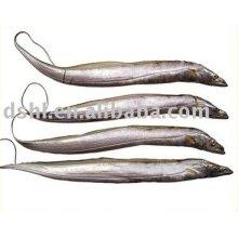 Замороженная ленточная рыба, замороженные хардтейлы, рыба замороженная лента