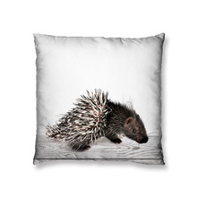 Baby raccoon design cushion